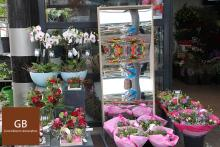 Laughing mirrors as an extra eye catcher are rented out to a flower shop
